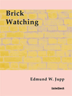 Brick Watching
