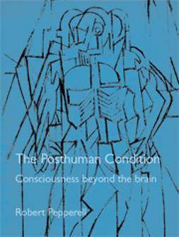 Pepperell, Robert - The Posthuman Condition: Consciousness Beyond the Brain, ebook