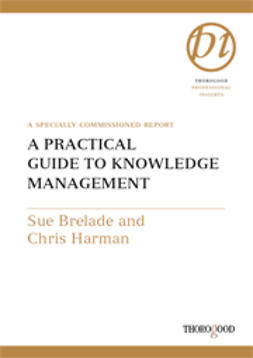 Brelade, Sue - A Practical Guide to Knowledge Management, e-kirja