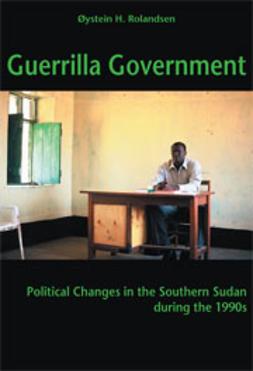 Guerrilla Government