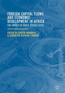 Tiruneh, Esubalew Alehegn - Foreign Capital Flows and Economic Development in Africa, ebook