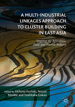 Gokan, Toshitaka - A Multi-Industrial Linkages Approach to Cluster Building in East Asia, ebook