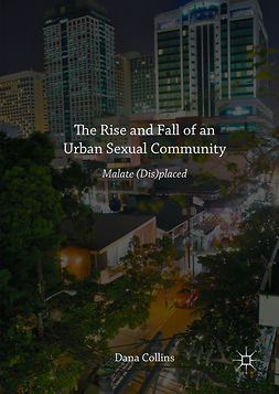 Collins, Dana - The Rise and Fall of an Urban Sexual Community, ebook