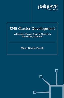 Parrilli, Mario Davide - SME Cluster Development, e-bok