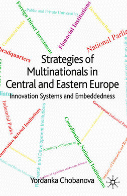 Chobanova, Yordanka - Strategies of Multinationals in Central and Eastern Europe, e-kirja