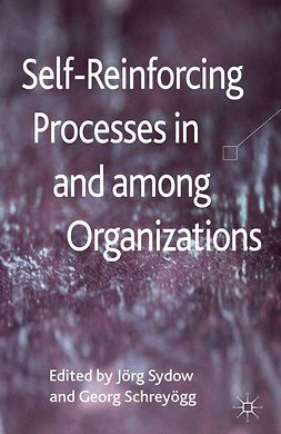 Schreyögg, Georg - Self-Reinforcing Processes in and among Organizations, e-kirja