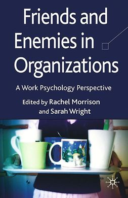 Morrison, Rachel L. - Friends and Enemies in Organizations, ebook