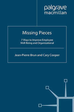 Brun, Jean-Pierre - Missing Pieces, e-kirja