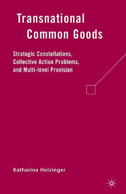 Holzinger, Katharina - Transnational Common Goods, ebook
