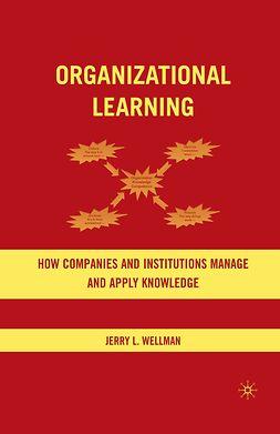 Wellman, Jerry L. - Organizational Learning, e-bok