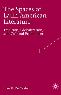 Castro, Juan E. - The Spaces of Latin American Literature, ebook