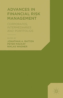 Batten, Jonathan A. - Advances in Financial Risk Management, e-kirja