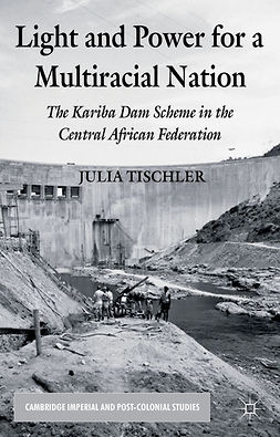 Tischler, Julia - Light and Power for a Multiracial Nation, ebook