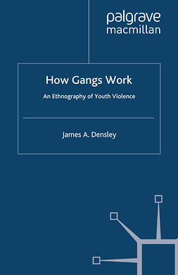 Densley, James A. - How Gangs Work, ebook