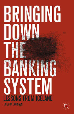 Johnsen, Gudrun - Bringing Down the Banking System, e-bok
