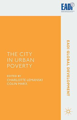Lemanski, Charlotte - The City in Urban Poverty, e-bok