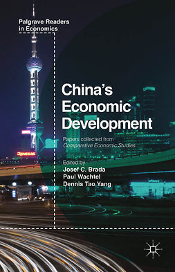 Brada, Josef C. - China's Economic Development, ebook