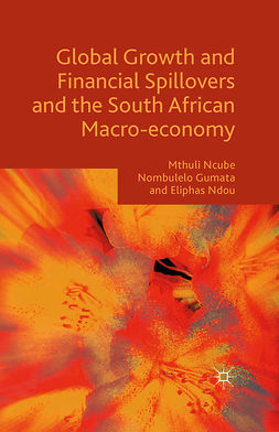Gumata, Nombulelo - Global Growth and Financial Spillovers and the South African Macro-economy, ebook