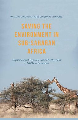 Fonjong, Lotsmart - Saving the Environment in Sub-Saharan Africa, ebook