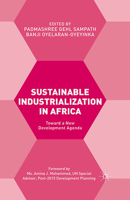 Oyelaran-Oyeyinka, Banji - Sustainable Industrialization in Africa, ebook