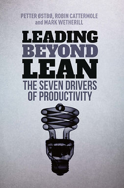 Cattermole, Robin - Leading Beyond Lean, ebook