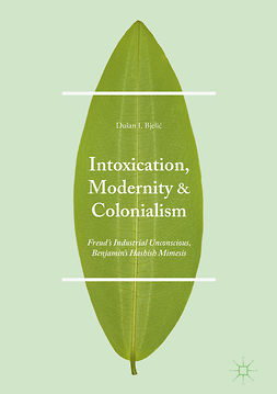 Bjelić, Dušan I. - Intoxication, Modernity, and Colonialism, e-bok