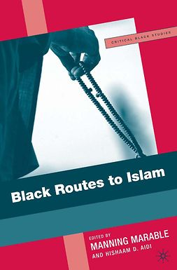 Aidi, Hishaam D. - Black Routes to Islam, ebook