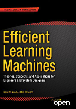 Awad, Mariette - Efficient Learning Machines, e-bok