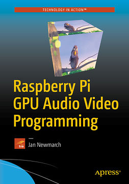 Newmarch, Jan - Raspberry Pi GPU Audio Video Programming, e-kirja