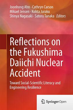 Ahn, Joonhong - Reflections on the Fukushima Daiichi Nuclear Accident, ebook