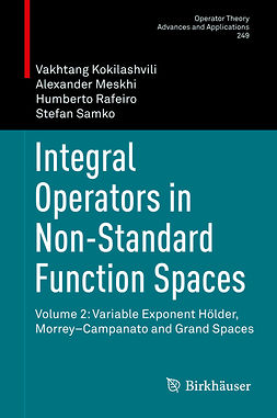 Kokilashvili, Vakhtang - Integral Operators in Non-Standard Function Spaces, ebook