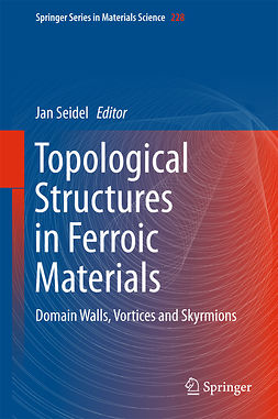 Seidel, Jan - Topological Structures in Ferroic Materials, ebook