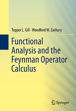 Gill, Tepper L. - Functional Analysis and the Feynman Operator Calculus, ebook
