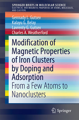 Belay, Kalayu G. - Modification of Magnetic Properties of Iron Clusters by Doping and Adsorption, e-kirja