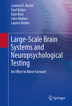 Barker, Lauren - Large-Scale Brain Systems and Neuropsychological Testing, ebook