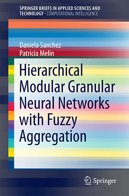 Melin, Patricia - Hierarchical Modular Granular Neural Networks with Fuzzy Aggregation, e-kirja