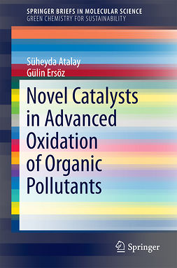 Atalay, Süheyda - Novel Catalysts in Advanced Oxidation of Organic Pollutants, ebook