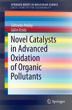 Atalay, Süheyda - Novel Catalysts in Advanced Oxidation of Organic Pollutants, ebook