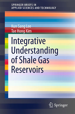 Kim, Tae Hong - Integrative Understanding of Shale Gas Reservoirs, e-kirja
