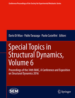 Castellini, Paolo - Special Topics in Structural Dynamics, Volume 6, ebook
