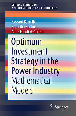Bartnik, Berenika - Optimum Investment Strategy in the Power Industry, ebook