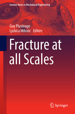 Milovic, Ljubica - Fracture at all Scales, ebook
