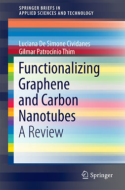 Brito, Felipe Sales - Functionalizing Graphene and Carbon Nanotubes, ebook