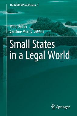 Butler, Petra - Small States in a Legal World, e-bok