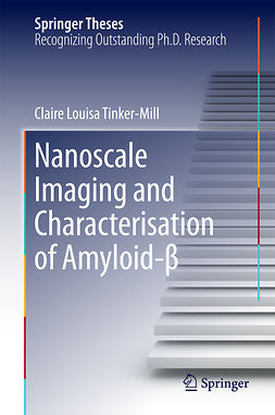 Tinker-Mill, Claire Louisa - Nanoscale Imaging and Characterisation of Amyloid-β, e-bok