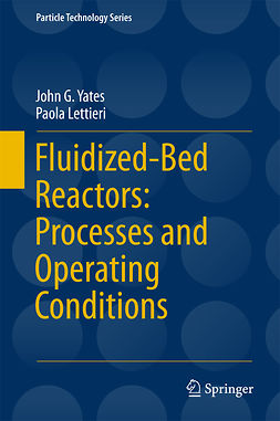Lettieri, Paola - Fluidized-Bed Reactors: Processes and Operating Conditions, ebook