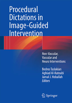 Al-Kutoubi, Aghiad - Procedural Dictations in Image-Guided Intervention, e-bok