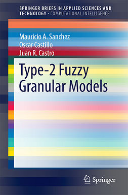 Castillo, Oscar - Type-2 Fuzzy Granular Models, ebook