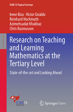 Biza, Irene - Research on Teaching and Learning Mathematics at the Tertiary Level, ebook