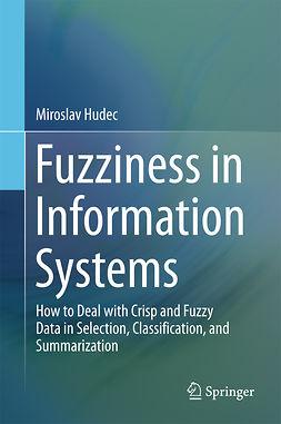 Hudec, Miroslav - Fuzziness in Information Systems, e-kirja